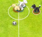 Кошкофутбол – Pet soccer