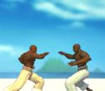 Борец капоэйра – Capoera fighter