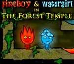 Огонь равно Вода в Лесном Храме